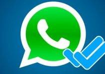 whatsapp doble check azul